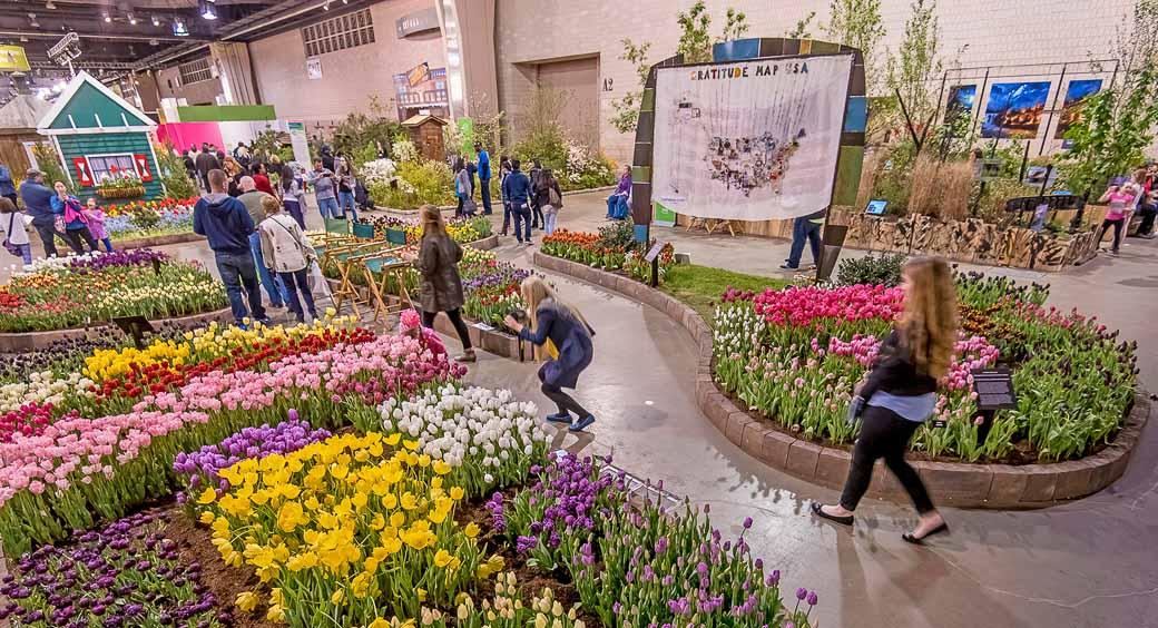 5 Spectacular Flower Festivals Across America Nea Member Benefits